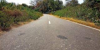 Landstraßen mit Anlagen lizenzfreie stockfotos