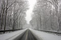 Landstraßenausgang umfasst mit Schnee Stockfoto