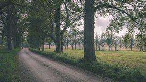 Landstraßengasse beleuchtete, indem sie Retro- Blick der sonnen- Weinlese glättete Stockbilder