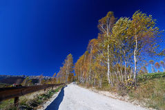Landstraßenlandschaft im Herbst Stockfotos