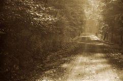 landsväg Arkivfoton