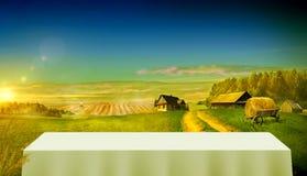 Landsväg i fältet som leder till lantgårdinnehaven Arkivfoton