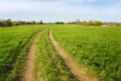 Landsväg i grönt fält och himmel Arkivfoto