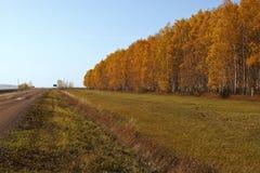 Landsväg i höst Fotografering för Bildbyråer