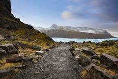 Landsväg i Island Svinafellsjokull Svinafell glaciär Arkivfoton