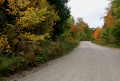 Landsväg i Maine med tjock höstfoilage Arkivfoton