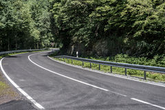 Landsväg i skogbetongen med hastighetsbegränsningtecken av den soliga dagen för 50 km timme Arkivbild