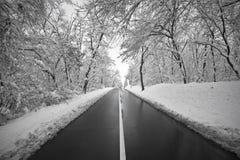 Landsväg i vintertid royaltyfria bilder