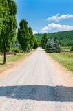 Landsväg med cypressträd Landskapbygd Arkivfoto