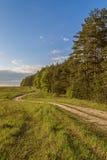 Landsväg med kurvor längs skogen Royaltyfri Fotografi