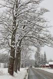 Landsväg med snö Arkivbild