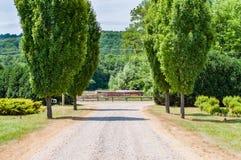 Landsväg med träd Landskapbygd Arkivbild
