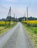 Landsväg nära Vigolo Marchese Piacenza, Italien arkivbild