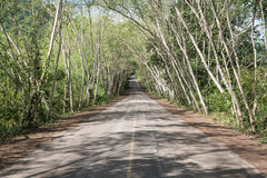 Landsväg på Kaeng Krachan Royaltyfri Bild