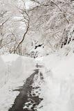 Landsväg som leder bland frostade träd i shirakawagoen, Takayam Arkivfoto