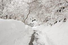 Landsväg som leder bland frostade träd i shirakawagoen, Takayam Arkivbild