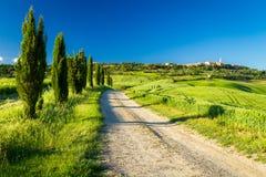 Landsväg som leder till Pienza, Tuscany royaltyfri foto