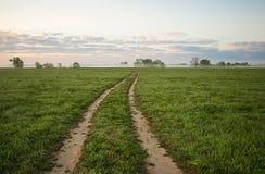 Landsväg som sträcker in i horisonten Härlig sommarmorni Royaltyfri Fotografi
