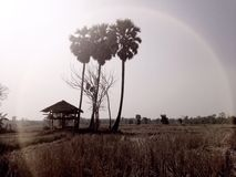 landsväg thailand Arkivbild