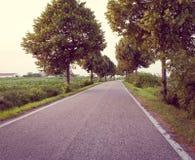 Landsväg till och med tree Arkivfoto