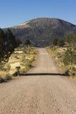 Landsvägar -- hogbacken Royaltyfri Bild