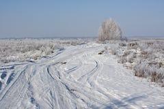 Vintervägar Royaltyfri Fotografi