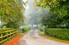 Landsvägar Irland Arkivfoto