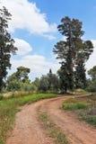 Landsvägen Arkivbild