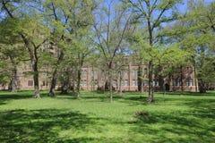 landsvape på det Hokkaido universitetet i Japan Royaltyfri Bild