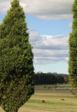 Landszene stockfotos
