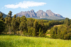 Landszene mit Bergen und Weinbergen Stockfotos