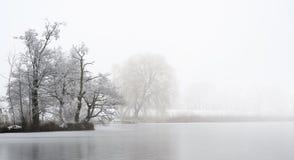 Landtong met naakte die bomen door hoar vorst op een bevroren meer op een koude mistige de winterdag, grijs landschap met exempla stock fotografie