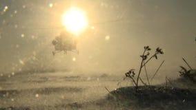 Landung des Hubschraubers Mi-8 an einem sonnigen Wintertag, Schneestaub anhebend stock video footage