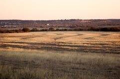 Landwaves Foto de Stock Royalty Free