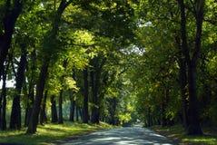 Landweg Stock Foto