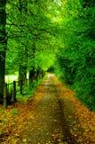 Landweg Royalty-vrije Stock Fotografie