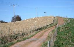 Landweg stock foto's