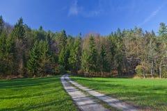 Landweg aan het bos Royalty-vrije Stock Afbeelding