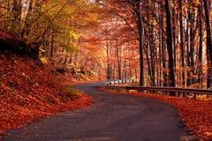 Landweg in de herfst Stock Foto