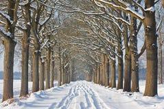 Landweg in de winter Royalty-vrije Stock Foto's