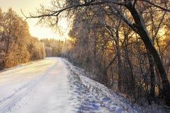 Landweg in de winter royalty-vrije stock fotografie