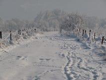 Landweg in de winter stock afbeeldingen