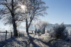 Landweg in de winteroverzichten Stock Afbeeldingen