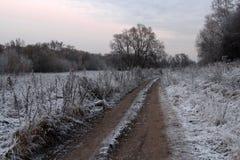 Landweg die onder berijpte kruiden bij zonsondergang leiden Royalty-vrije Stock Fotografie
