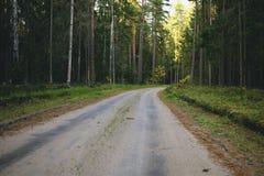Landweg door bos stock fotografie