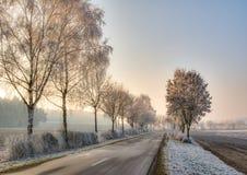 Landweg in een de winterlandschap met berijpte bomen Stock Afbeeldingen