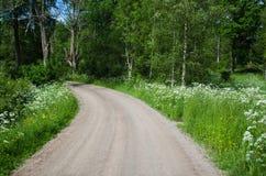 Landweg in een de zomerlandschap Stock Fotografie