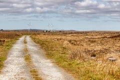 Landweg in een moeras met windenergie en typische vegetatie en rotsen stock fotografie