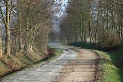 Landweg en bomen zonder bladeren Royalty-vrije Stock Foto's