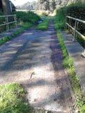 Landweg en brug Stock Afbeeldingen